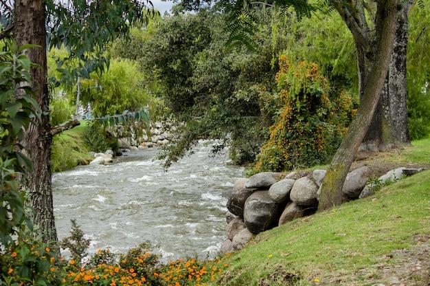 Piękna rzeka przechodzi przez wiejski park miejski