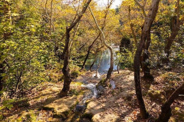 Piękna rzeka w naturze