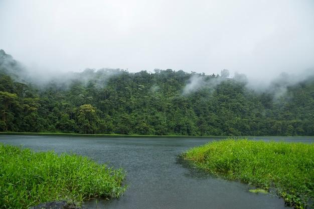 Piękna rzeka w tropikalnym tropikalnym lesie deszczowym przy costa rica