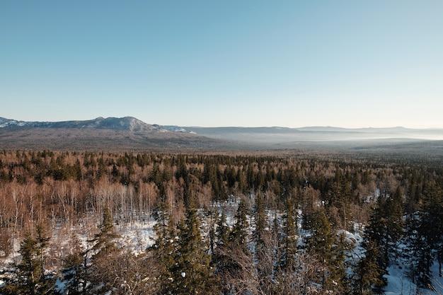 Piękna sceneria błękitnego nieba nad długim łańcuchem gór otaczającym las mieszany pokryty śniegiem w mroźny zimowy dzień