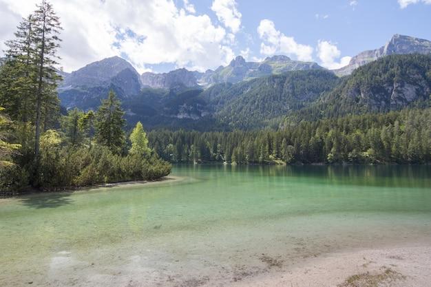 Piękna sceneria jasnej spokojnej rzeki w lesie z górami i wzgórzami