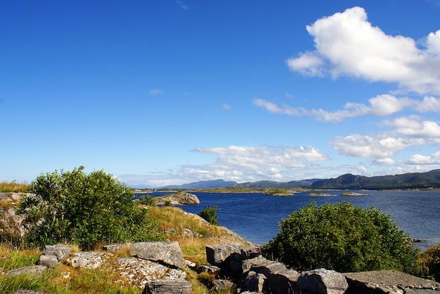 Piękna sceneria jeziora otoczonego zapierającą dech w piersiach norweską zielenią w norwegii