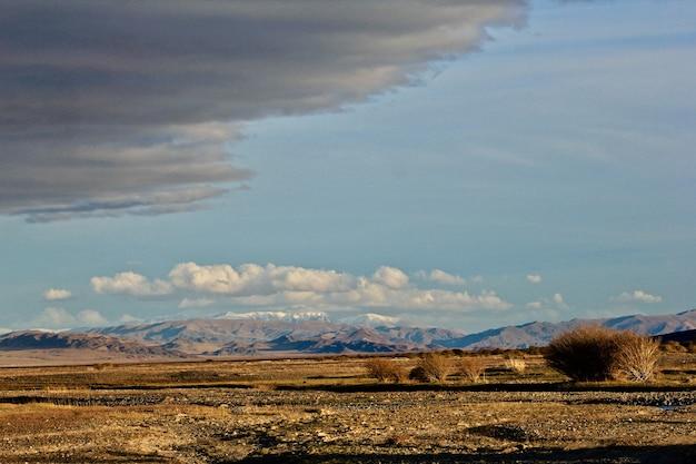 Piękna sceneria mongolskiej dzikiej przyrody i krajobrazu