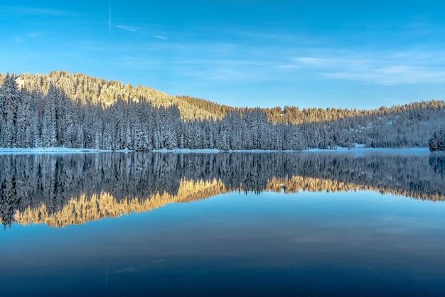 Piękna sceneria pasma drzew odbijających się w jeziorze otoczonym górami