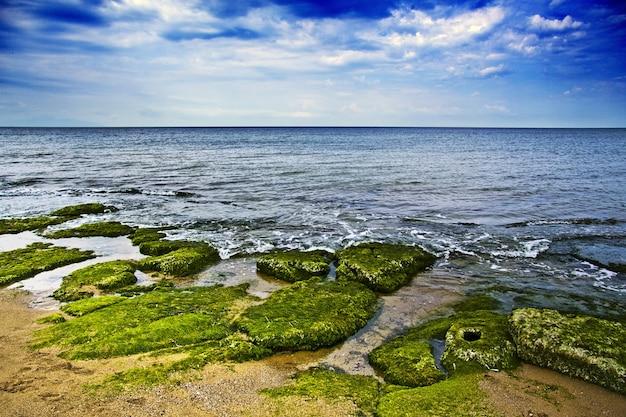 Piękna sceneria wybrzeża morskiego z dużą ilością skał pokrytych mchem