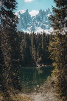 Piękna sceneria zielonych drzew w pobliżu zbiornika wodnego nad wysokimi górami