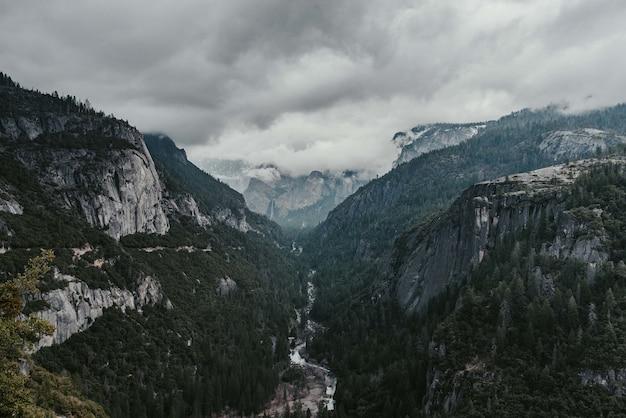 Piękna sceneria zielonych jodeł otoczona wysokimi górami skalistymi