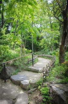 Piękna ścieżka w japońskim stylu ogródzie. osaka.