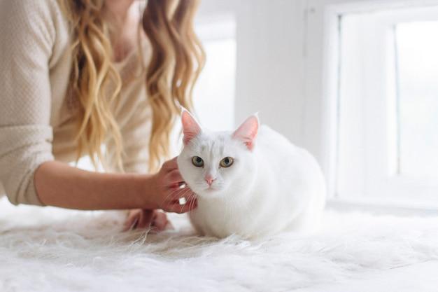 Piękna seksowna blondynka siedzi w oknie z kotem