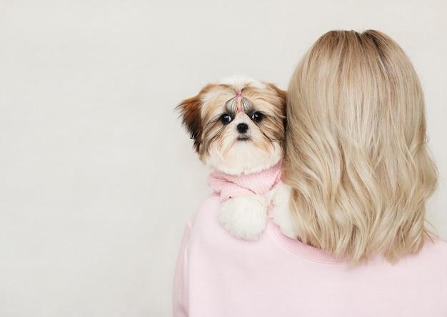 Piękna śliczna dziewczyna trzyma zadbanego szczeniaka shih tzu w różowym swetrze na jej ramieniu