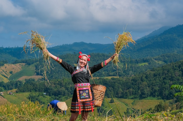 Piękna średniorolna dziewczyna z słomą w ryżowych polach w północnym tajlandia