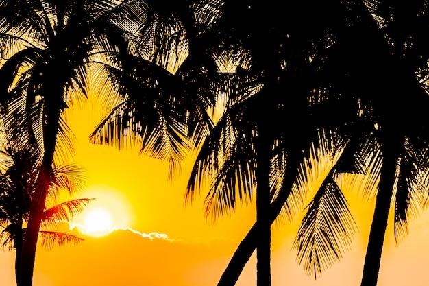 Piękna sylwetka palmy kokosowej na niebie blisko oceanu morza plaży o zachodzie słońca lub wschodzie słońca