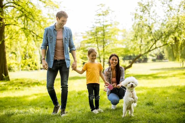 Piękna szczęśliwa rodzina bawi się z maltańskim psem na świeżym powietrzu