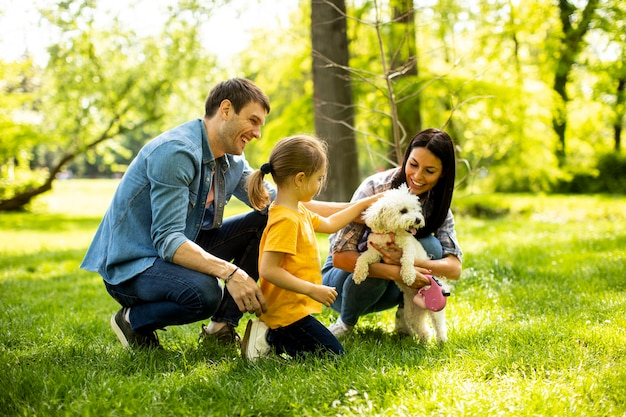 Piękna szczęśliwa rodzina bawi się z psem bichon na świeżym powietrzu w parku