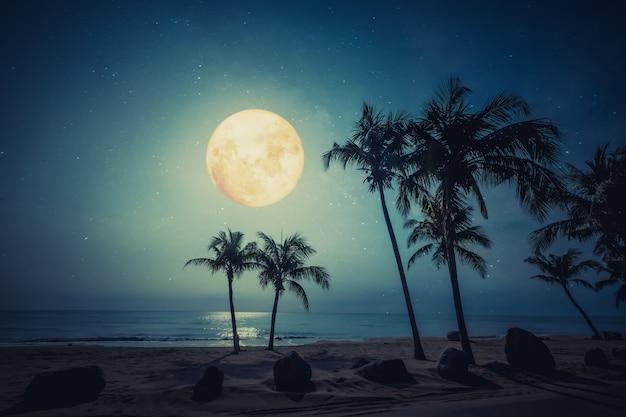 Piękna tropikalna plaża fantasy z gwiazdami i pełnią księżyca na nocnym niebie.