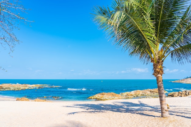 Piękna tropikalna plaża morze ocean z palmą kokosową wokół białej chmury błękitne niebo na tle podróży wakacyjnych