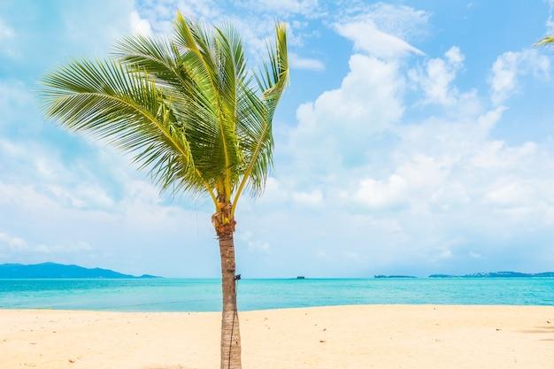 Piękna tropikalna plaża, ocean morski z palmą kokosową na wakacje w podróży