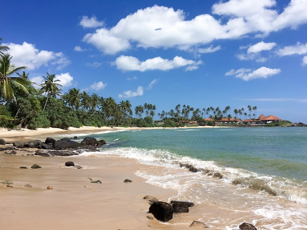 Piękna tropikalna plaża z wielkimi falami. sri lanka
