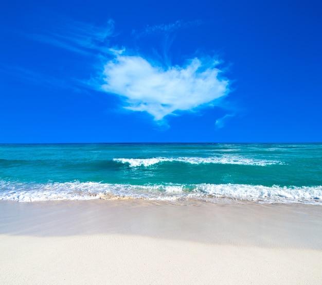Piękna tropikalna wyspa malediwy z plażą, morzem i błękitnym niebem dla koncepcji tła wakacje natura