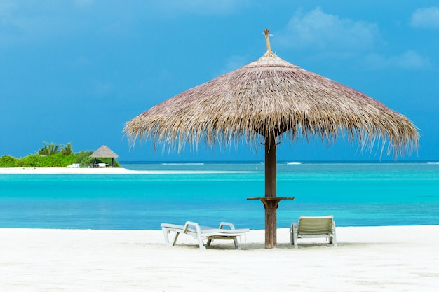 Piękna tropikalna wyspa malediwy z plażą