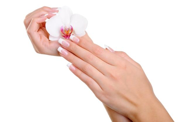 Piękna zadbana kobieca dłoń z eleganckimi palcami i francuskim manicure trzyma biały kwiat