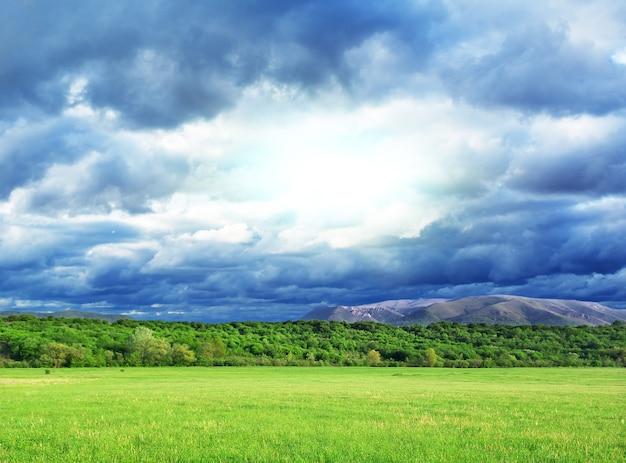Piękna zielona łąka i głębokie niebo. projektowanie krajobrazu.