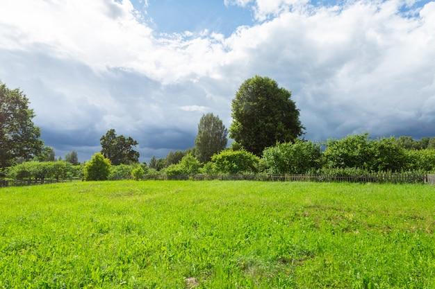 Piękna zielona łąka przed deszczem.