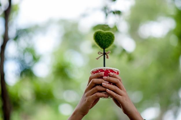 Piękna zielona ręka i serce wizerunki koncepcja walentynki z miejsca na kopię