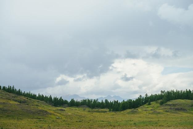 Piękna zielona sceneria z krawędzią lasu na wzgórzach z sylwetkami gór na horyzoncie pod zachmurzonym niebem. klimatyczny krajobraz górski z leśnymi wzgórzami i sylwetkami gór w zachmurzonym niebie