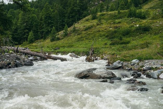 Piękna zielona sceneria z potężną górską rzeką z kamieniami i głazami w pobliżu lasu. malowniczy górski krajobraz z burzliwą rzeką i drzewami iglastymi na wzgórzu. zgniły pień drzewa w szybkiej wodzie.