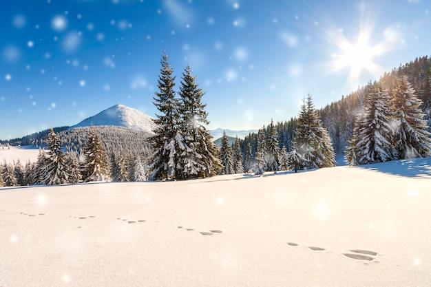 Piękna zimowa panorama ze świeżym opadającym śniegiem
