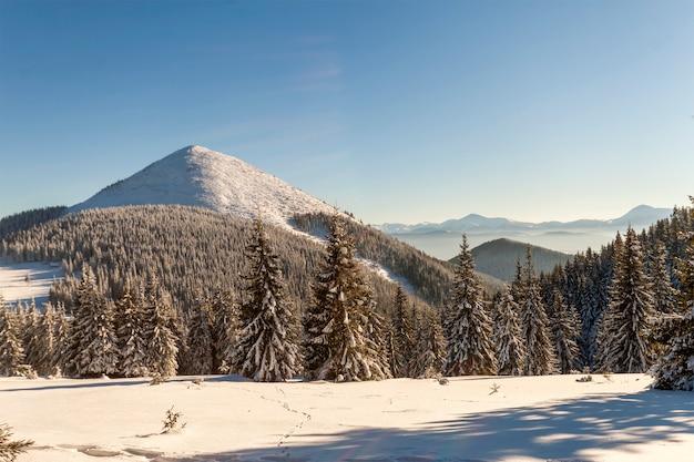 Piękna zimowa panorama ze świeżym śniegiem.