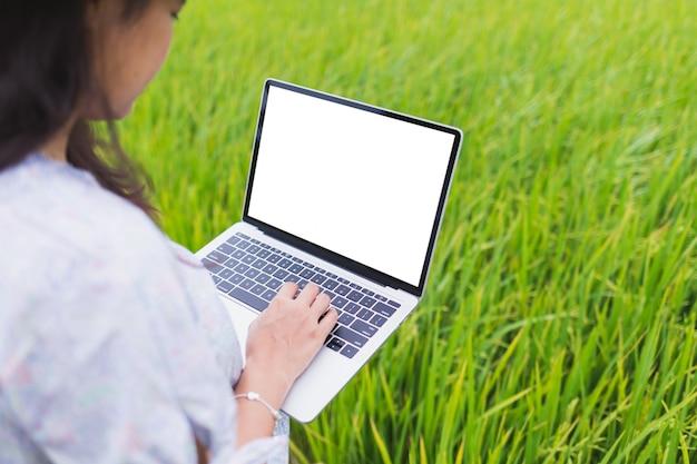 Piękne azjatykcie kobiety stoi w ryżowym polu i pracują używać laptop jest ubranym przypadkowe ubrania.