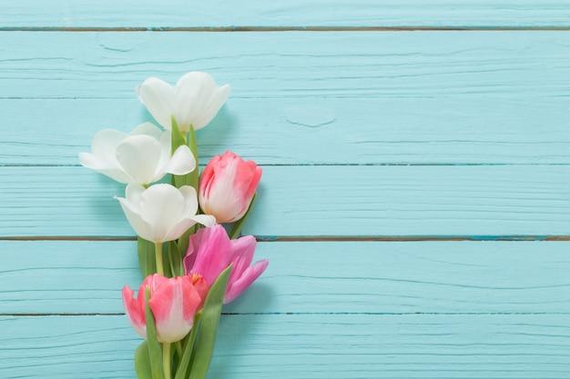 Piękne białe i różowe tulipany na niebieskiej powierzchni drewnianej