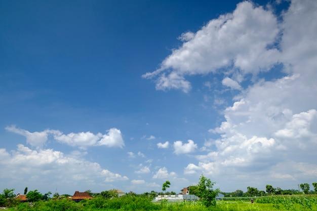 Piękne błękitne niebo z białą chmurą, długi format może używać banera, tła, tapety