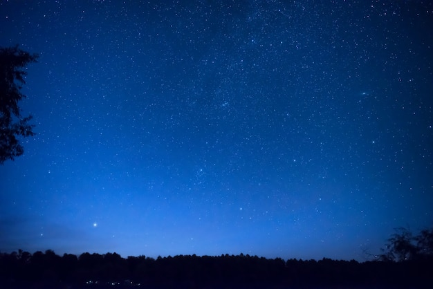 Piękne błękitne nocne niebo z wieloma gwiazdami nad lasem. tło przestrzeni drogi mlecznej