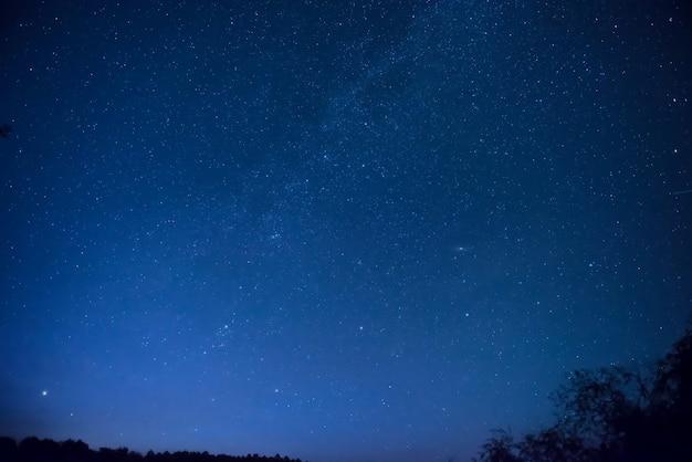 Piękne błękitne nocne niebo z wieloma gwiazdami nad lasem. tło przestrzeni mlecznej