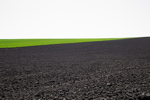 Piękne czarne pola na ukrainie. rolniczy krajobraz wiejski