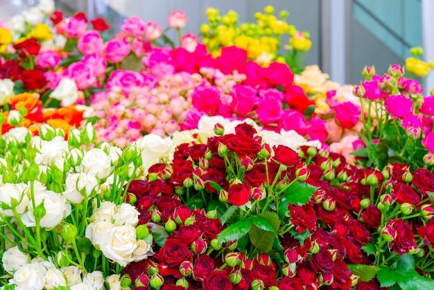Piękne czerwone róże. kwiatowy uroczysty naturalne tło.