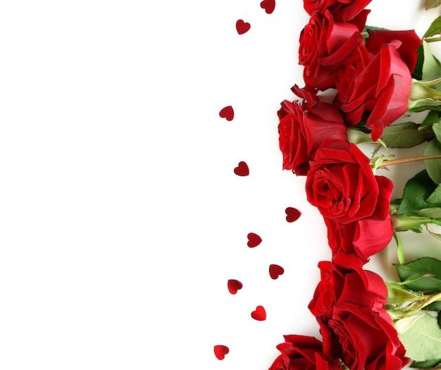 Piękne czerwone róże, na białym tle