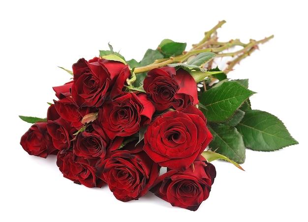 Piękne czerwone róże na czystym białym tle