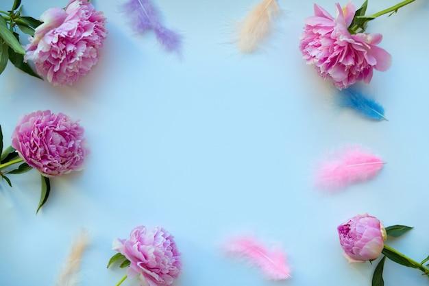 Piękne delikatne różowe piwonie na niebieskim tle