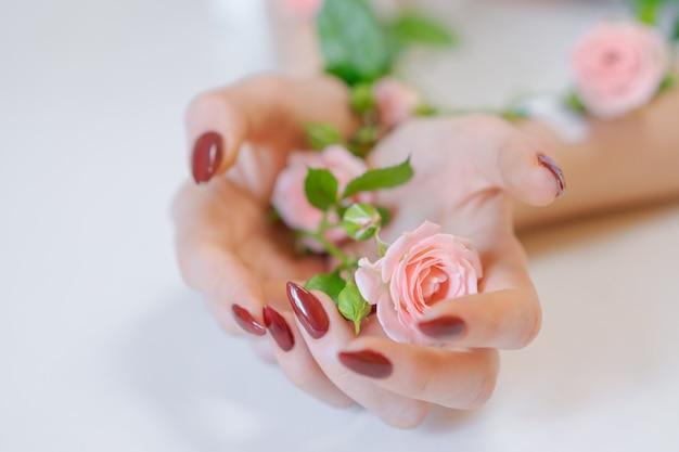 Piękne dłonie kobiet z różowe kwiaty róży na białym tle. pojęcie pielęgnacji skóry. kwiaty klejone taśmą klejącą