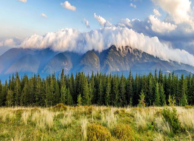 Piękne dramatyczne białe chmury nad górami. leśne wzgórza w karpatach. ukraina.