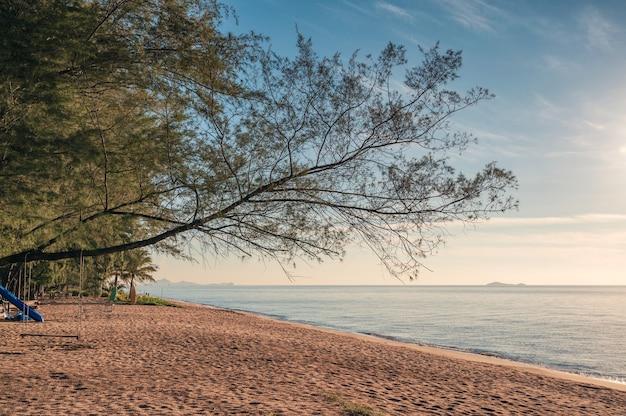 Piękne drzewo z drewnianą huśtawką na plaży w tropikalnym morzu o poranku