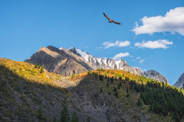 Piękne górskie krajobrazy ze złotym światłem na stokach ośnieżonych gór. malowniczy krajobraz górski z rozświetlonym kolorem w błękitne niebo.