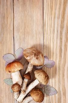 Piękne grzyby leśne, borowiki brązowe, grzyby osiki