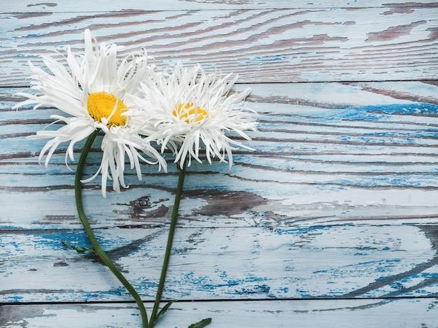 Piękne, jasne kwiaty leżące na niebieskim, drewnianym stole. widok z góry, zbliżenie