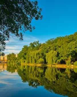 Piękne jezioro latem z odbiciem drzew na powierzchni wody. piękny park miejski w kijowie