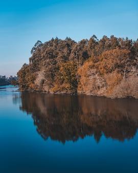 Piękne jezioro z odbiciem klifu z dużą ilością drzew na wybrzeżu